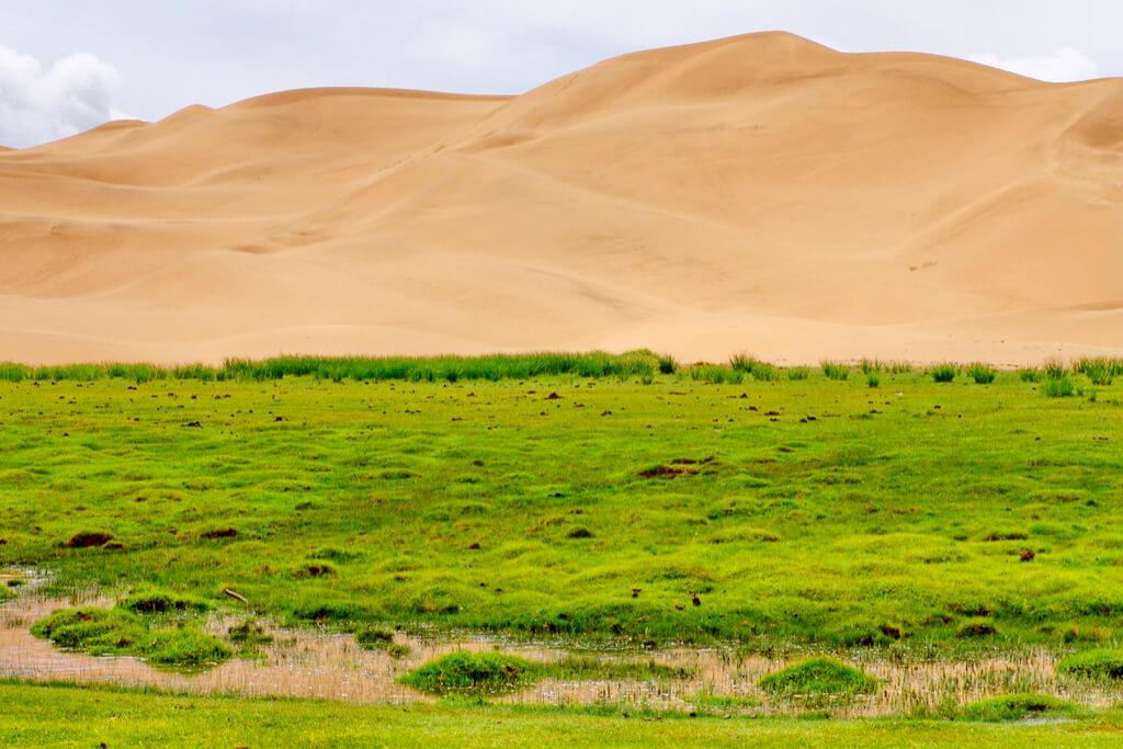 【中国・モンゴル】「2つの国にまたがる、見果てぬ草原と巨大な砂丘」