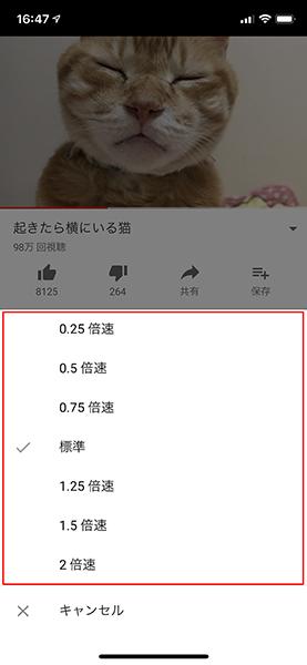 YouTubeの動画を短い時間で視聴再生したい! 倍速再生にする方法とは
