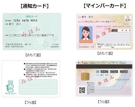 今さら聞けない! マイナンバー通知カードからマイナンバーカードの新規申請、写真の撮り方など